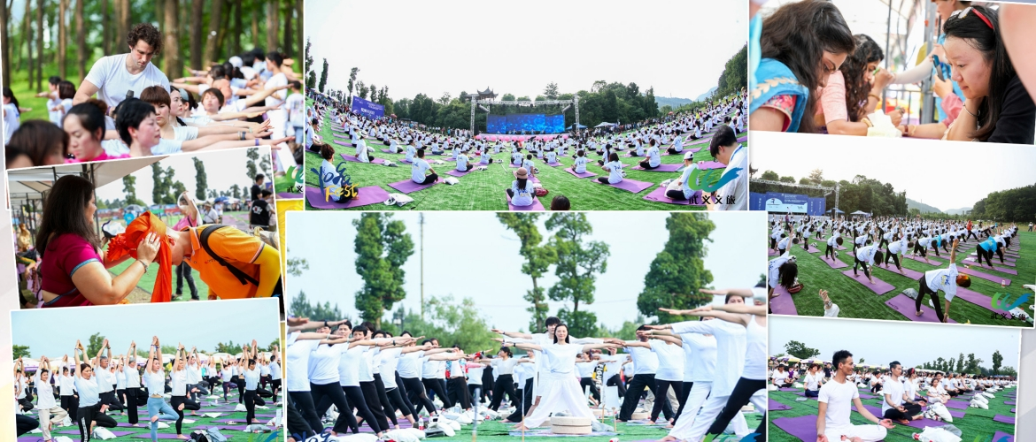 In the run up to the 5th IDY - 2019 celebrations, a curtain riser 