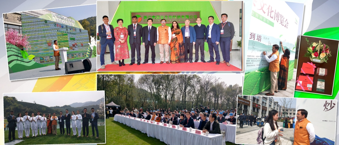 CG Anil rai's message to Chinese friends at the Hangzhou Tea Culture 